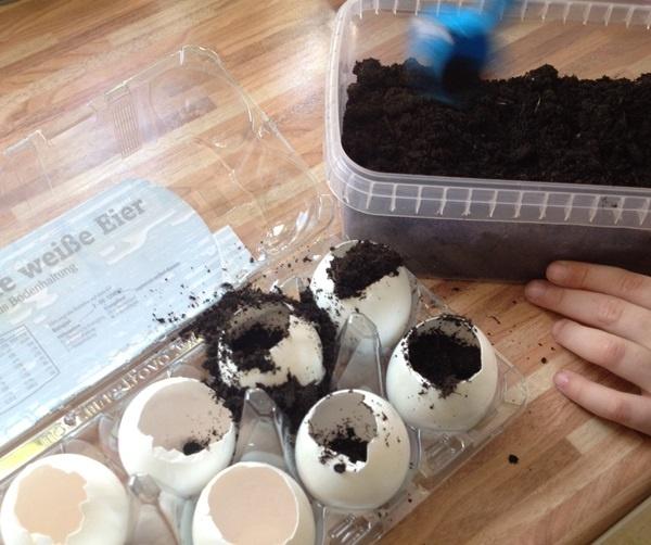 Leere Eierschalen mit Erde befuellen