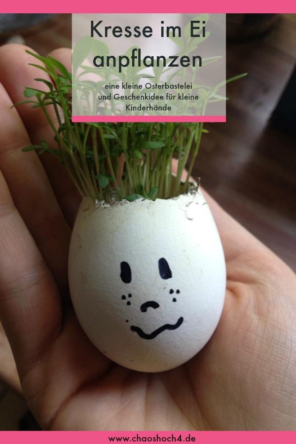 kleines Osterbasteln Kresse im Ei anpflanzen