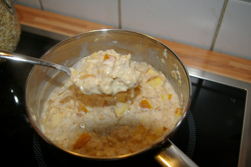 fertiges Apfel Zimt Porridge