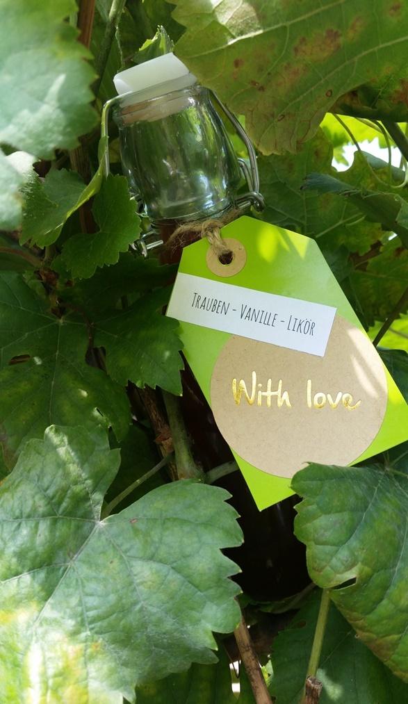 Trauben Vanille Likör aus dem Garten