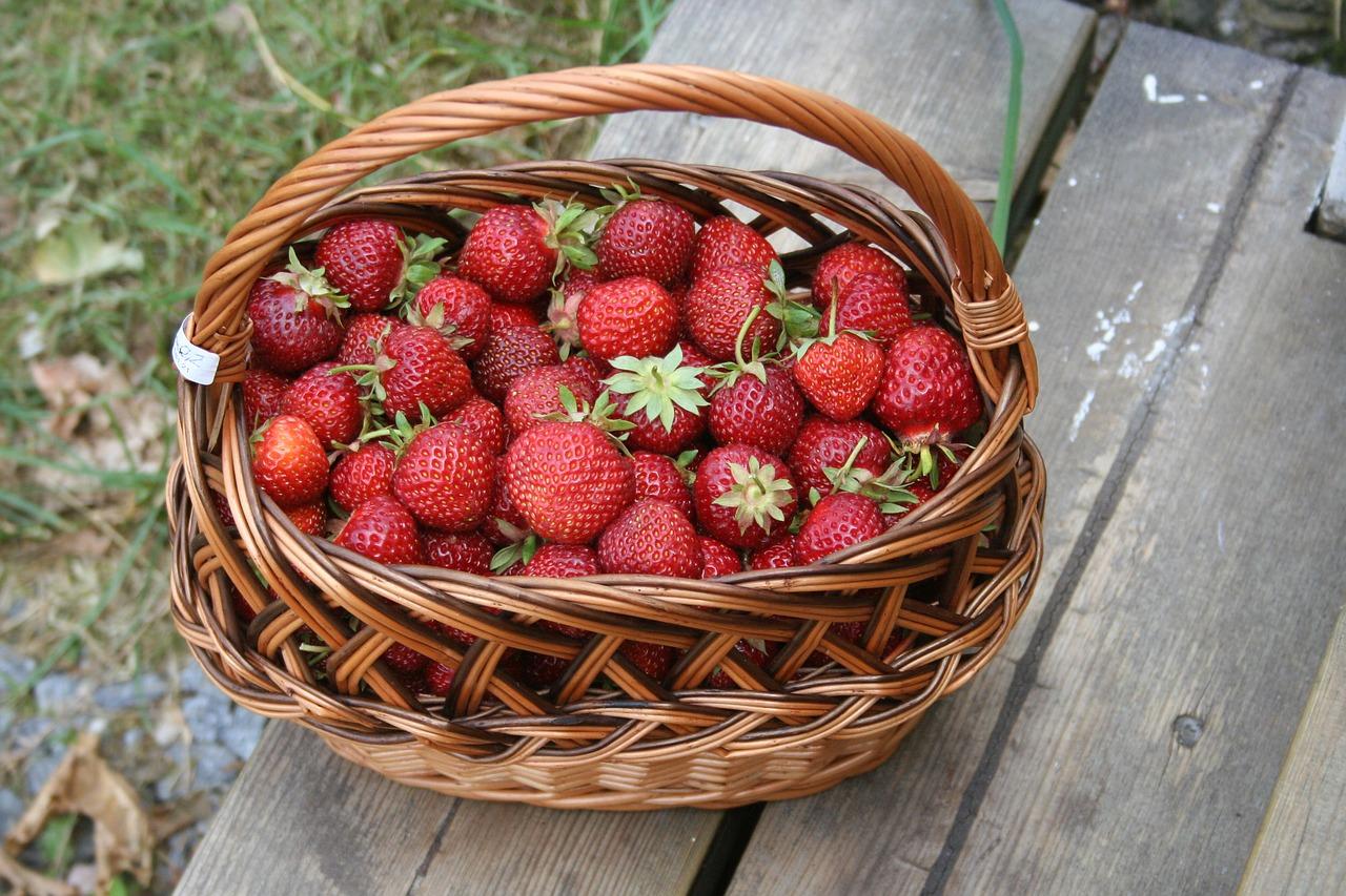 Erdbeerkoerbchen für Erdbeertiramisu