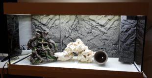 Unser neues Juwel Rio 180 LED Aquarium – Wasserchaos #1