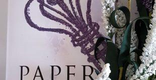 Paper Passion – das Begehren